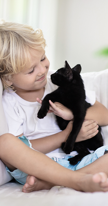 child and kitten enjoying time together in new home by Pratt Home Builders